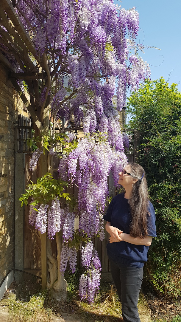 Isabella in front of wisteria